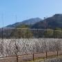 比叡山坂本駅から本坂を経由し、延暦寺東塔・比叡山山頂へのルート