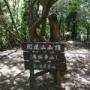 住山集落〜白髪岳〜松尾山〜住山集落(周回コース)