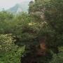 妙義山(中間道縦走と石門巡り)