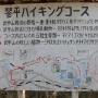 奥武蔵 琴平尾根