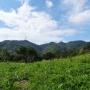ロックガーデンから東お多福山頂経由、蛇谷北山から最高峰、有馬