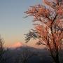 丹沢主脈(塔ノ岳〜丹沢山〜蛭ヶ岳〜黍殻山)