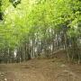 大ヨケノ頭〜藤棚山〜蕨山(展望台)〜蕨山(最高点)