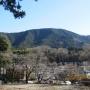 南山からあいかわ公園