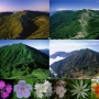 長壁尾根から蝶、大滝山、中村新道で徳本峠