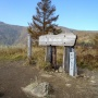 南アルプス:甘利山〜千頭星山ピストン