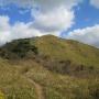 平尾台 茶ヶ床園地からの偽水晶山往復