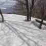 皆ヶ山 - 幼・老のブナが生い茂る山道を行く森林浴登山