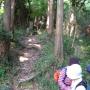 田浦梅林〜やまなみルート〜天園コース