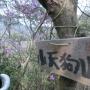 盤滝から小天狗山東稜・蛇谷北山南東稜周回