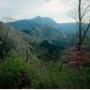 大岳山(サルギ尾根ー馬頭刈尾根ー大岳沢)