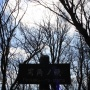 玄倉-ユーシン-同角山稜-檜洞丸-ツツジ新道-西丹沢自然教室