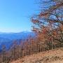 雲取山  三峰神社ー鴨沢
