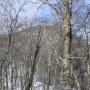 つどいの森からの直登コース