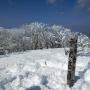 藤原岳から鈴鹿山脈最高峰、御池岳
