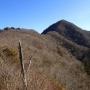 王岳 - 富士の大観と美しい樹林を楽しむ