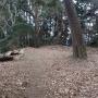 石尊山-北茨城市(女坂-石尊山-金山峠-女坂周遊コース)
