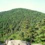 金峰山と国師ヶ岳(大弛峠からピストン)