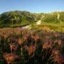 信濃大町 七倉 船窪小屋 針の木谷 五色が原 立山 剱岳 早月尾根 番場島 早月川河口