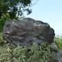 片知山〜瓢ヶ岳〜奥瓢岳〜(口板山登山口から往復)岐阜県美濃市