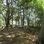 摩耶山頂から天狗道、ハーブ園経由布引まで