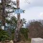 雲取山 (東日原ー富田新道ー雲取山荘ー長沢背稜ーヨコスズ尾根)