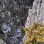 山梨百名山「黒川鶏冠山(再登)」+日本百名山「大菩薩嶺(再登)」※柳沢峠からピストン