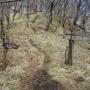 西丹沢自然教室〜檜洞丸〜犬越路〜用木沢出合〜西丹沢自然教室