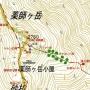 鳳凰三山 薬師岳・観音岳(夜叉神の森スタート)
