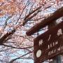 川井駅〜棒ノ折山〜岩茸石山〜惣岳山〜御嶽駅
