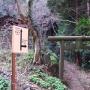 太平山〜馬不入山縦走+岩船山