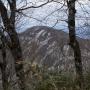 水神コースから北泉ヶ岳経由泉ヶ岳からのカモシカコース下山