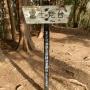 霊園前BS〜八王子城山〜北高尾山稜〜底沢峠〜相模湖駅