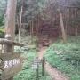 金剛山(妙見谷〜ダイトレ〜久留野峠〜ロープウェイ前)